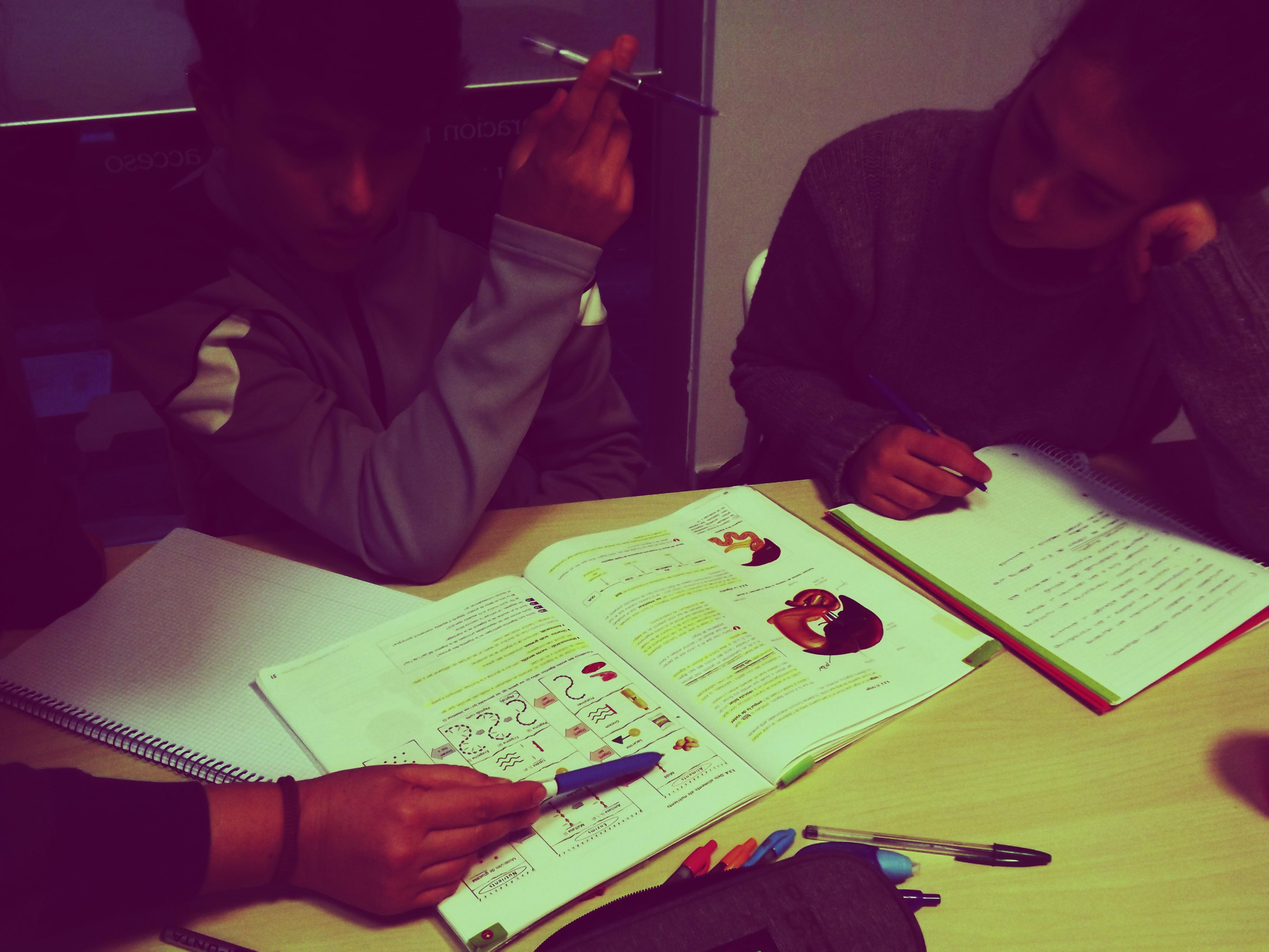 Profesora de secundaria eplicando biología a dos alumnos